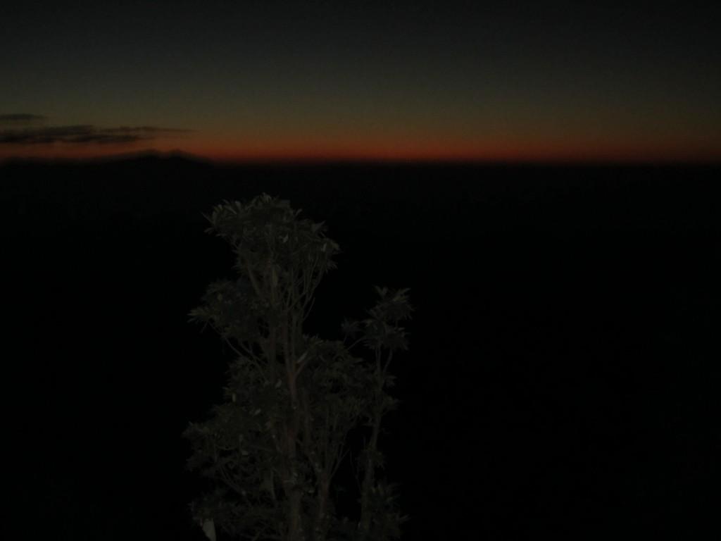 4.dawn_1