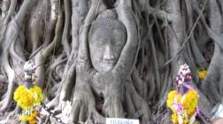 Wat Mahathat_2